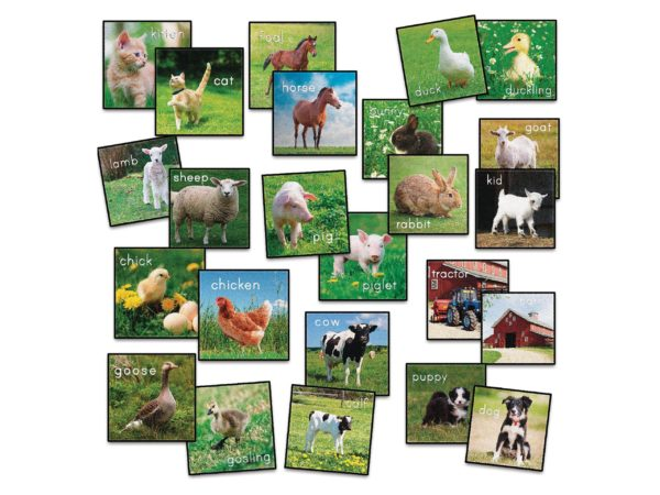 Farm Animals Carpet Squares